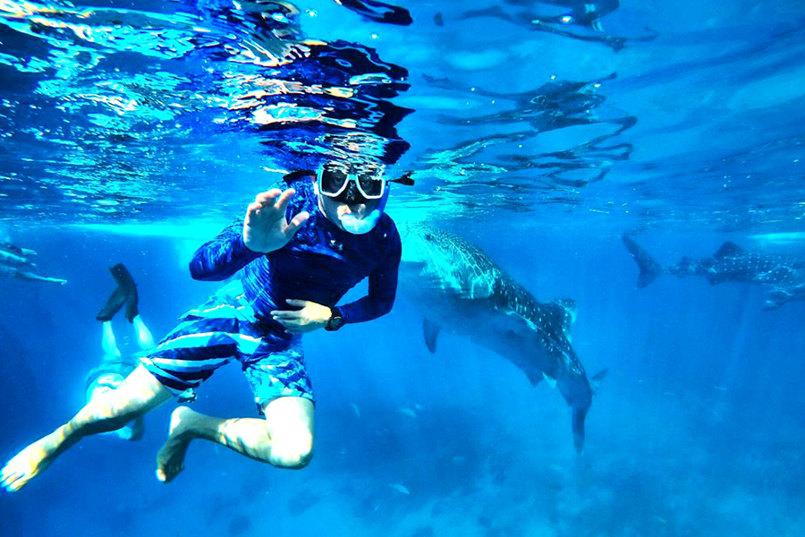 The Exciting Sport of Canyoneering and Whale Shark Watching