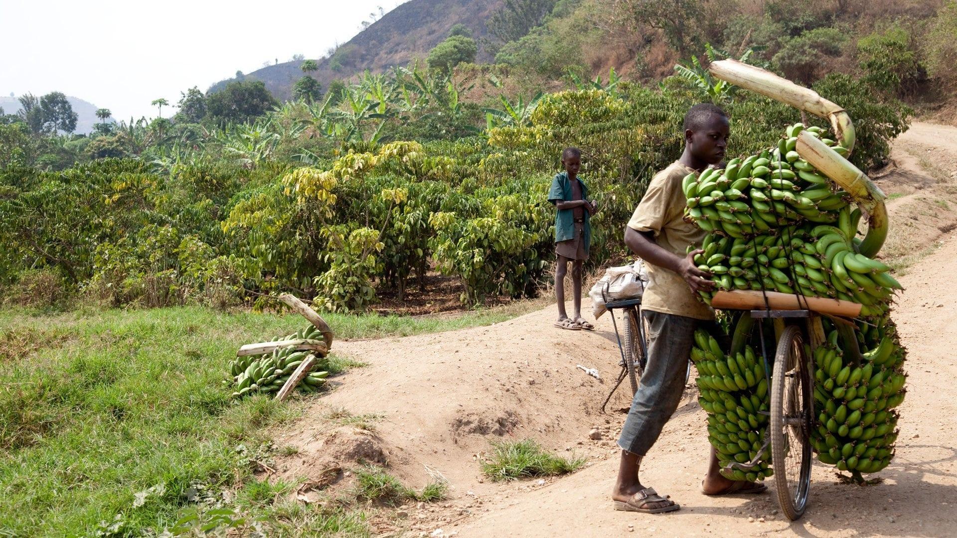 5 Safety Tips for Female Travelers Visiting Uganda