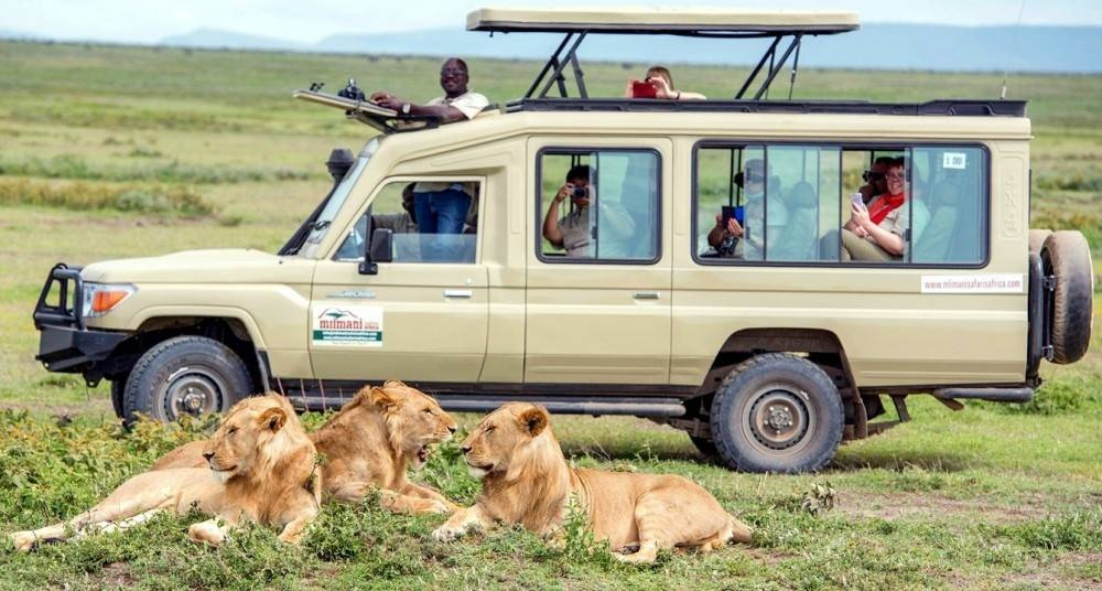 Experience the best of Tanzania with the Safari Hub
