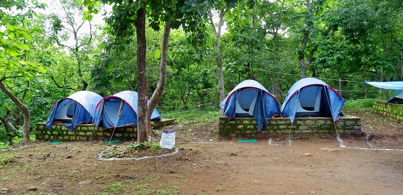 Jungle Camping: The Unexplored Side of Srisailam