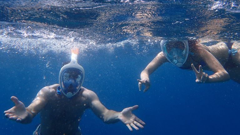What You Need to Have the Best Snorkelling